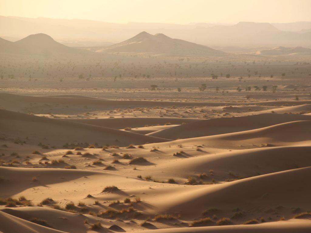 sand dunes, morocco, sunset, beautiful light