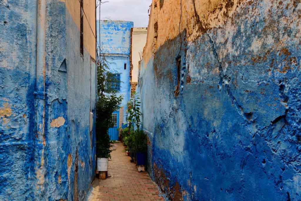 narrow alley, blue walls, plants in the back