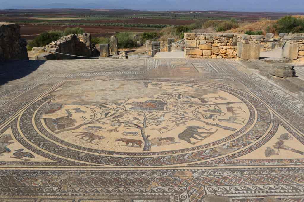 Mosaik am Boden mit wilden Tieren, Elefant, Nilpferd, Gepard in Volubilis, Marokko