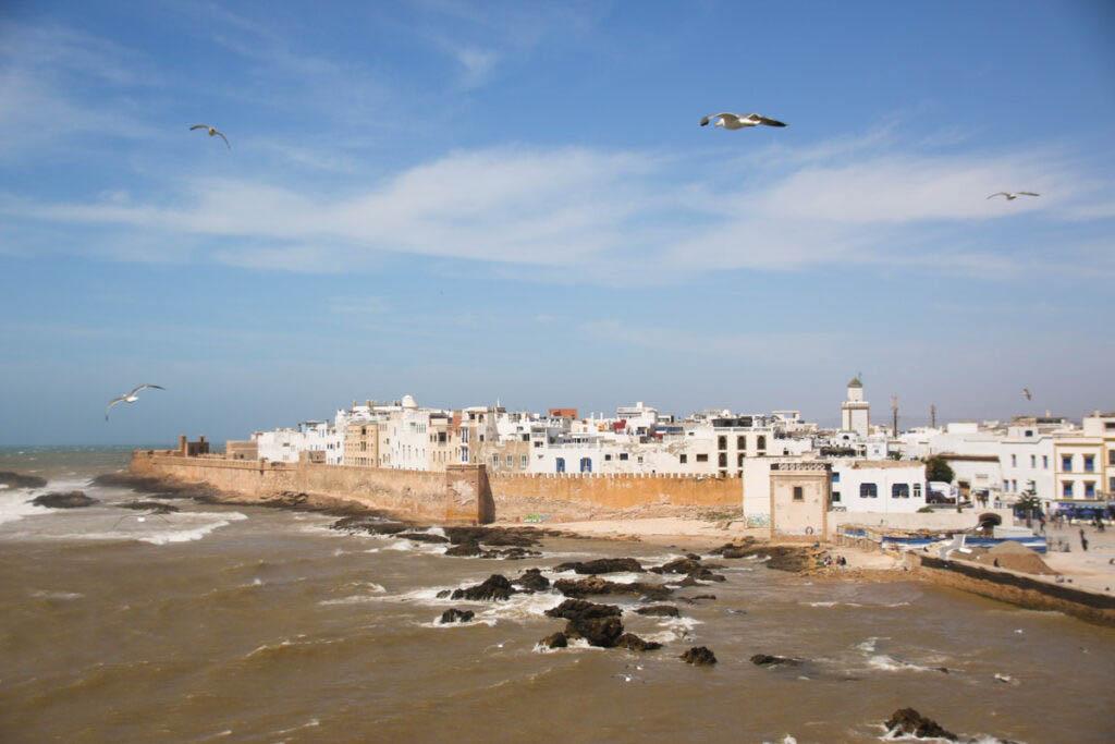 Medina of Essaouira, things to do in Essaouira, climb Skala du Port for this view