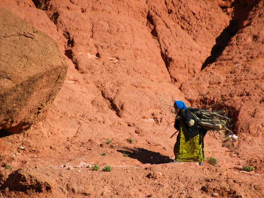 Woman in Morocco, carrying heavy wood on her back in front of red mountain