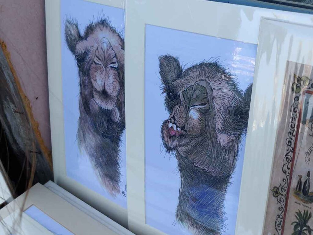 Drawings of camels with funny facial expressions in the souk of Muttrah