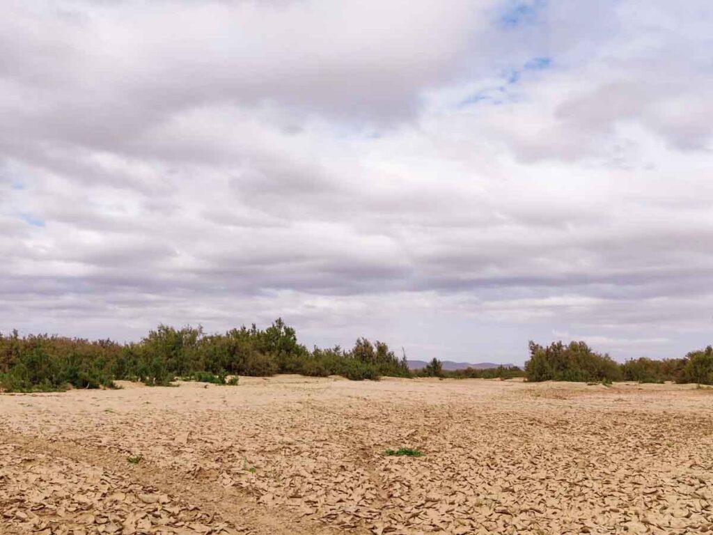trockeners Flussbett in der Wüste in Marokko